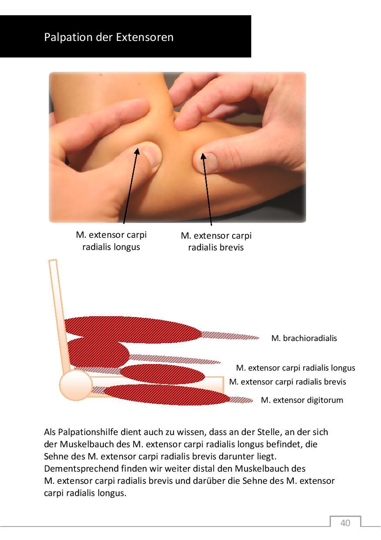 Buch: Myofasciale Triggerpunkt - Therapie - Pschick Sales