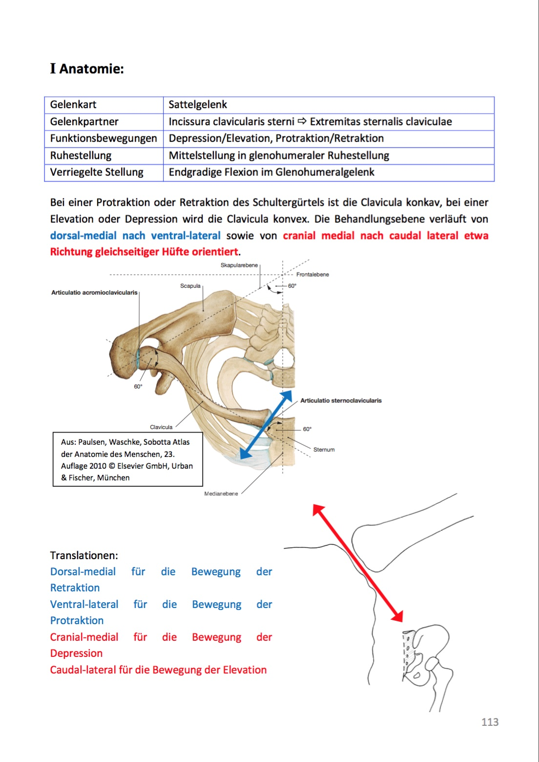 Groß Elevation Und Depression Anatomie Fotos - Anatomie Ideen ...