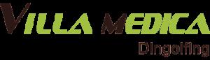 LogoVM